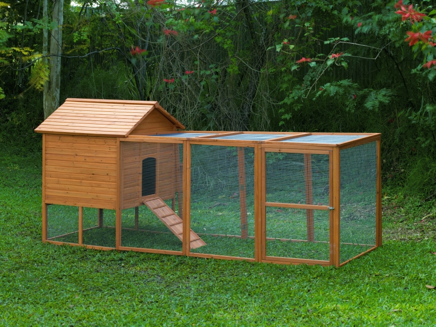 Yam coop easy to chicken coop plans examples for Chicken and duck coop